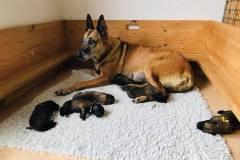 Deejay mit ihren Babies