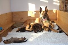 Deejay et ses bébés 1 semaine